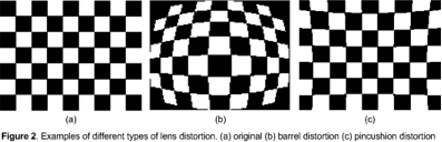 lens distortion figure 2