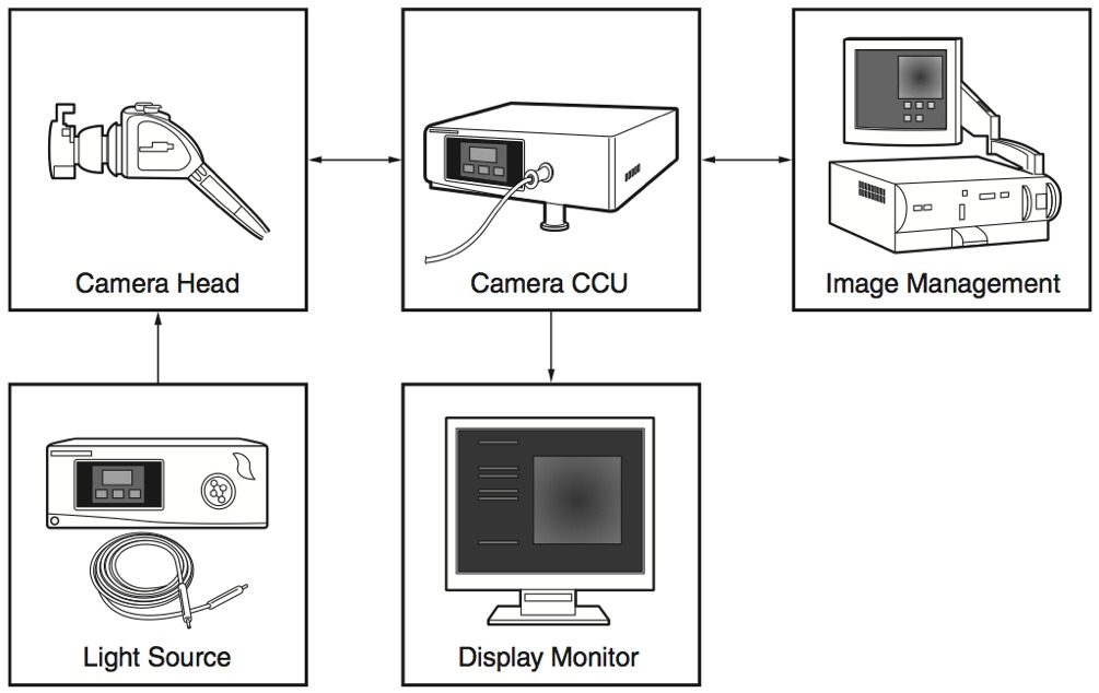 Using xilinx fpgas to solve endoscope system architecture challenges figure 1 endoscope system components ccuart Choice Image